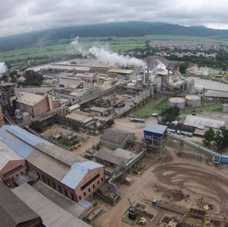 El ingenio Ledesma proyecta moler más de 3 millones de toneladas de caña de azúcar