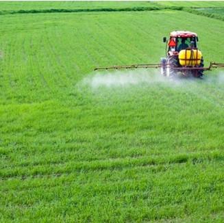 La presión impositiva sobre el campo: el Estado se queda con $62 de cada $100 de renta agrícola