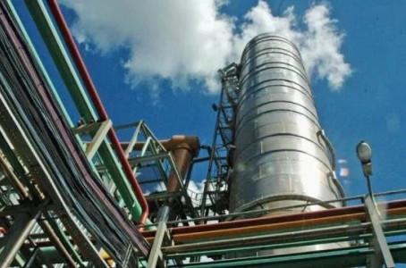 Notoria caída de la producción de biocombustibles