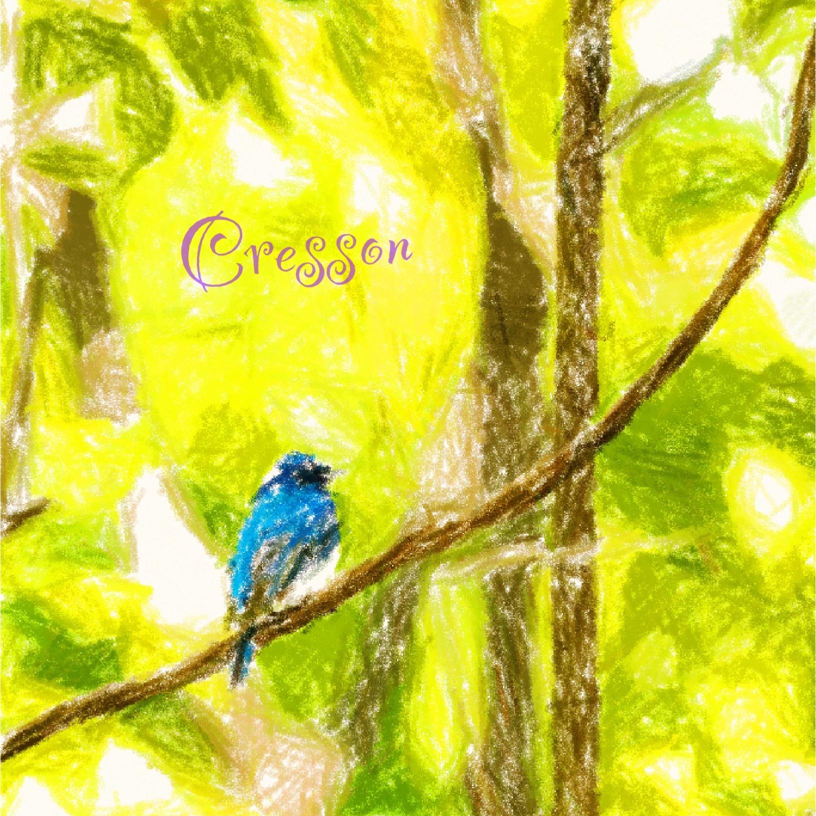 Cresson