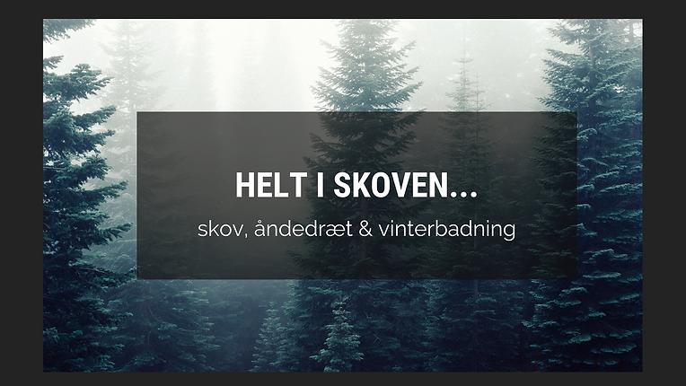 Vinterbadning i mørket i Avnsø… (5).png