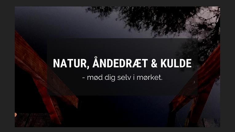 Vinterbadning i mørket i Avnsø… (2).png