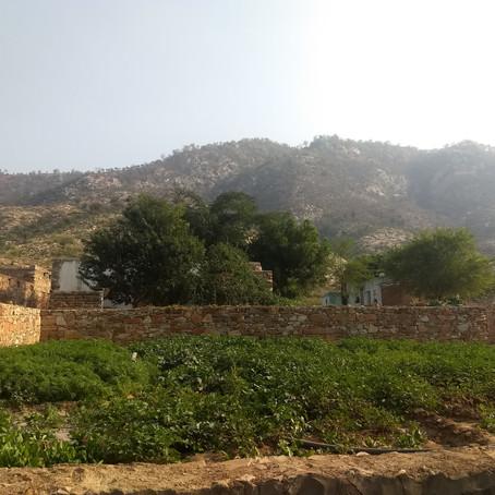 Kitchen Garden;                        Strengthening Nutritional Status of Rural Families