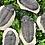 Thumbnail: Tribolites Grandes