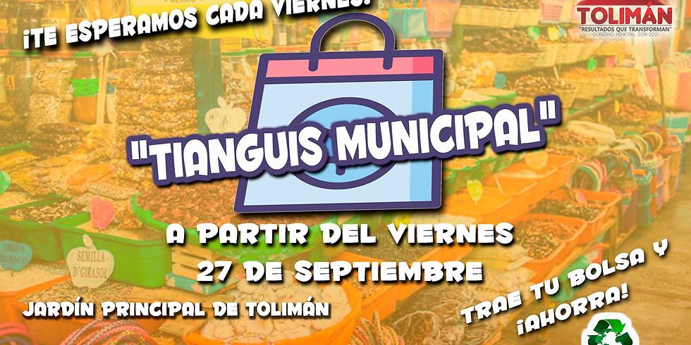 Tianguis Municipal