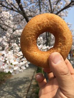桜並木とおからドーナツ