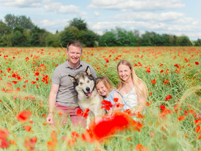 Gorgeous poppy field family session // Oxfordshire