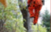 Deer hunter climbing seer stand