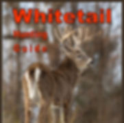 Whitetail Hunting Guide front cover
