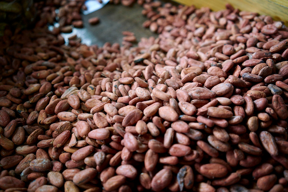 Cacao beans in a local market in Oaxaca