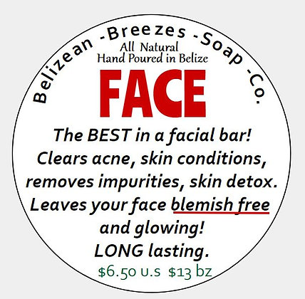 Activated Charcoal Facial Bar