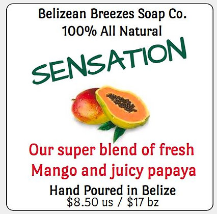 SENSATION- Mango-Papaya Bar!  YUM!