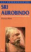 Las_enseñanzas_de_Sri_Aurobindo.jpg