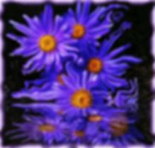 86_f.jpg