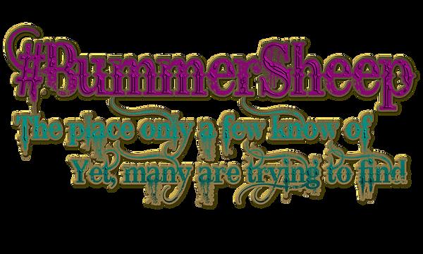 new bummer logo.png