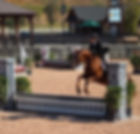 Adult Hunter at Tryon!_._._._._.jpe #try