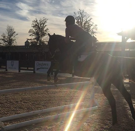 Bella and Tully schooling at Tryon today