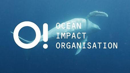 The Ocean Impact Organisation, based in Sydney Australia