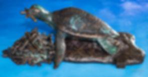 turtle3web.jpg