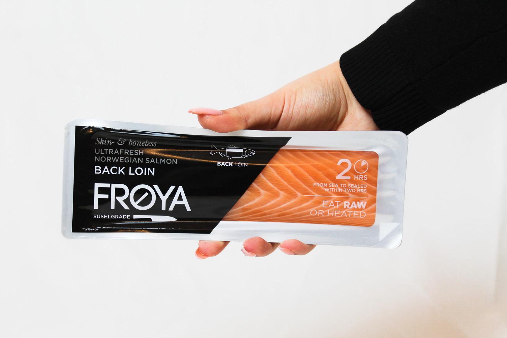salmon project
