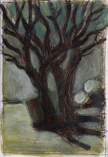 Jean-Marie Isnard - L'arbre du lac
