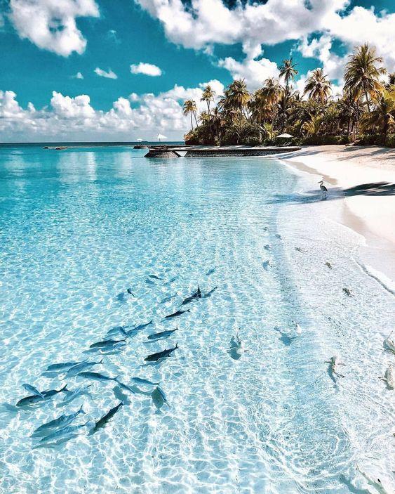 Maldivler vizesiz gidilecek yerler