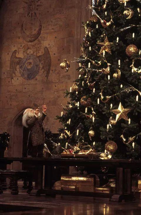 hogwards christmas yeniyıl