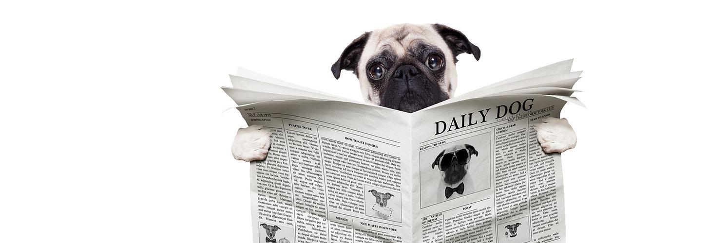 The News Hound Newspaper Printers