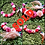 Thumbnail: Rose Feather Crown II