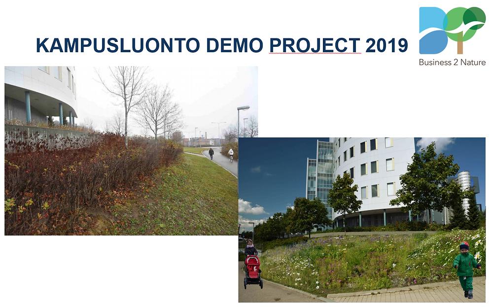 Kampusluonto Demo Project.