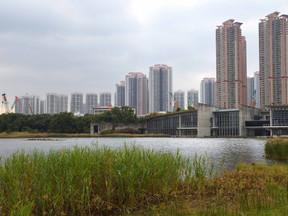 B2N goes conferencing: ESP9 World Conference, 11.–15.12.2017, Shenzhen, China.  Part 4: Mangroves, m