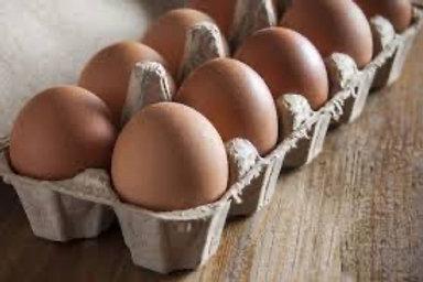 Free Range Eggs dozen