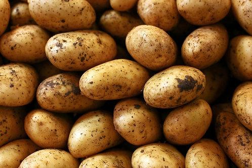 25kg sack of New season Divaa Potatoes