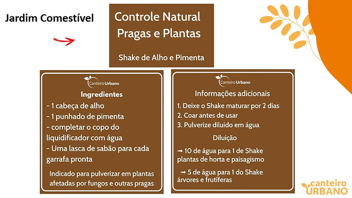 Slide2 (2).JPG