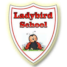 Ladybird International School