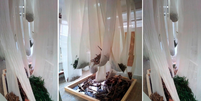 A Process in Time, MA Art & Environment degree show 2012