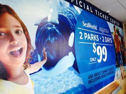 SeaWorldWall2.jpg