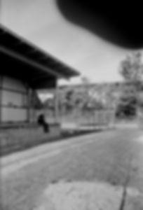 IMG_20171115_0014_EDIT.jpg