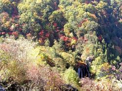 秋展望台より王滝