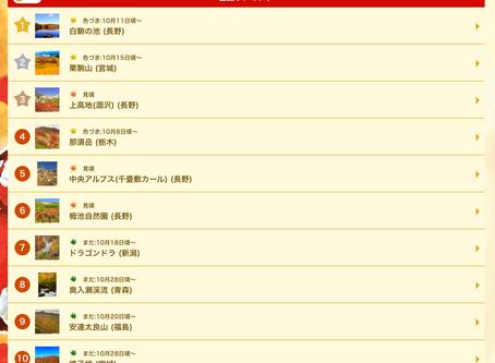 白駒池紅葉情報2019