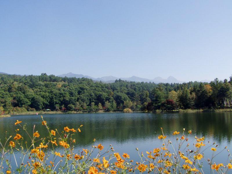 八ヶ岳11