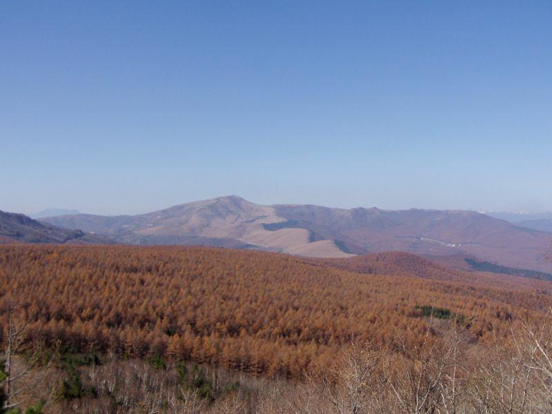 八ヶ岳24