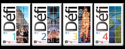 capas-livros-defi_edited_edited.png