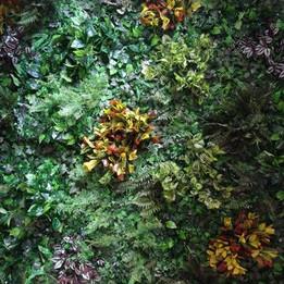 Foliage & Flower Wall 5