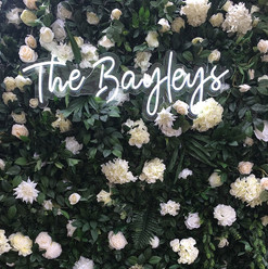 Bayleys_edited.jpg