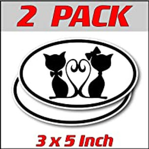 3 x 5 inch Oval (2 Pack) | Twin Kitties
