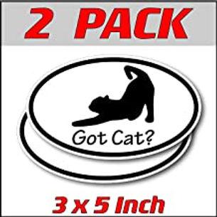 3 x 5 inch Oval (2 Pack) | Got Cat?