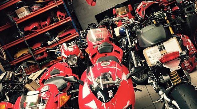 Ducati Temple!#ducati#bmwmotorcycle#beau