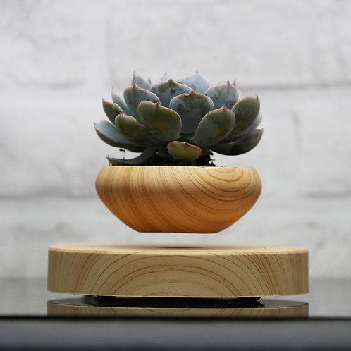 Floating Plant pot