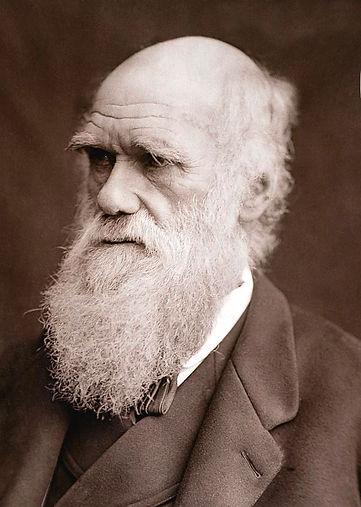 1877-charles-darwin-portrait-photograph-